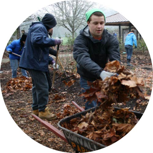 Students volunteering at a park