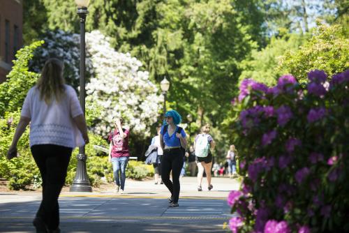 Students walking on sidewalk with spring flowers.