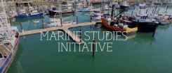 Feature story image, Marine Studies Initiative Banner
